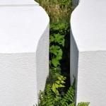 Conceptual Garden