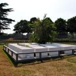 Conceptual Garden 2013